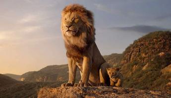 """Disney está desenvolvendo uma sequência de """"O Rei Leão""""; confira"""